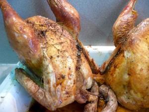pollos ibericos angel goméz