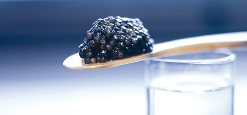 boutique-caviar