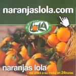 271108-naranjas-lola